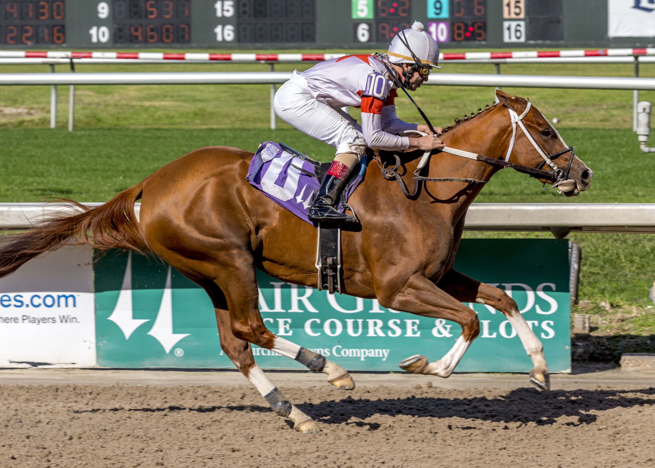 Tapiture filly rolls by six in career debut