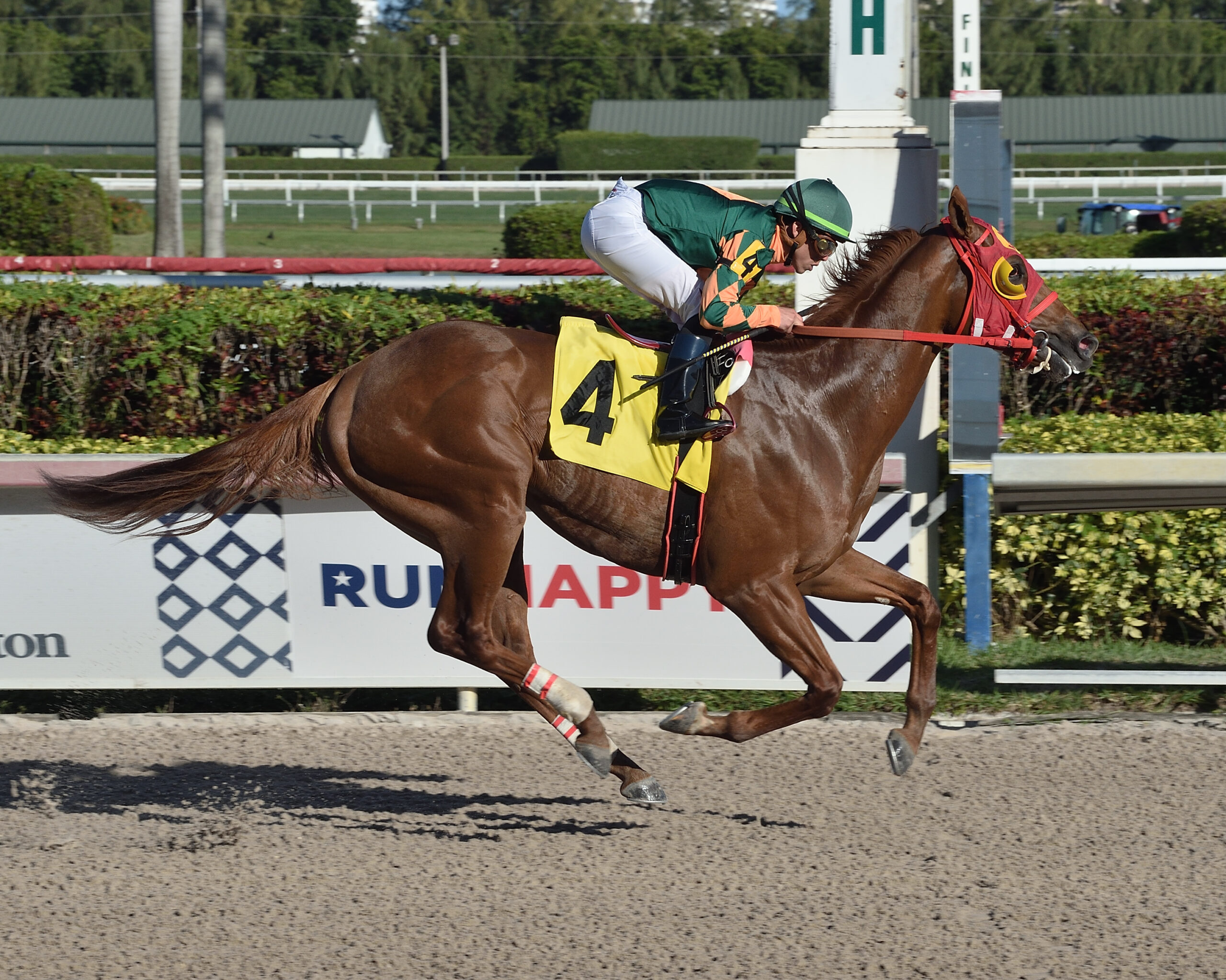 Undefeated Tapiture colt headed to Florida Derby (G1)