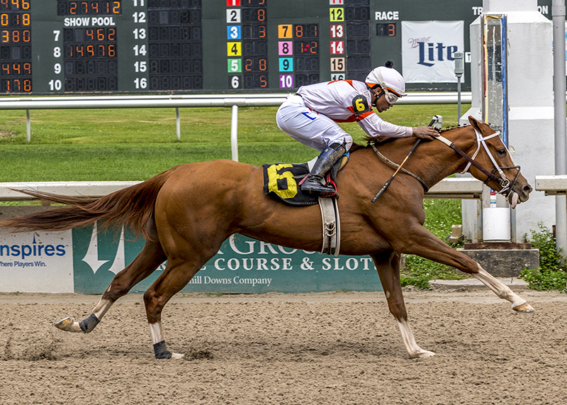 Tapiture filly scores second stakes win