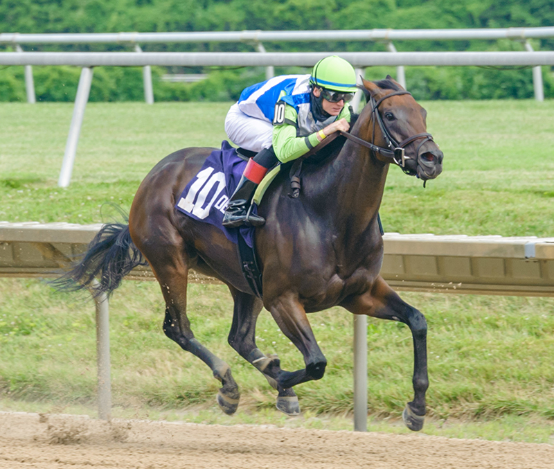 Dialed In's Chalon back to stakes-winning ways