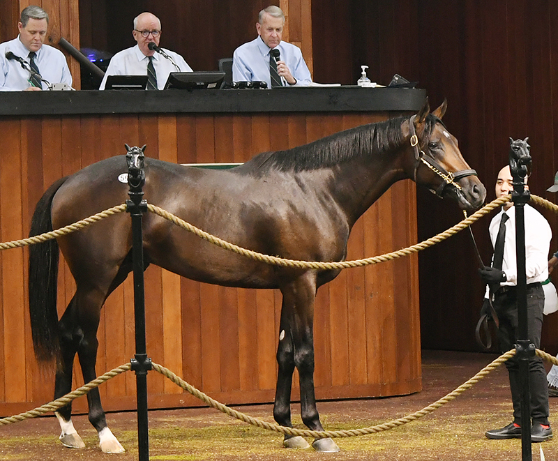 More strong results for Klimt at OBS June 2yo sale