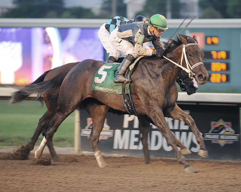 Tale of Ekati filly wins duel for first stakes victory